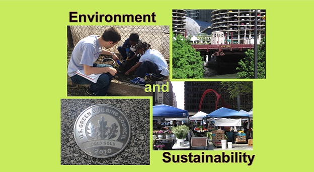 internships and class in Environment and Sustainability